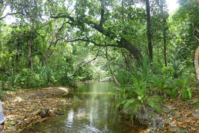 Laguna di Pulau Peucang