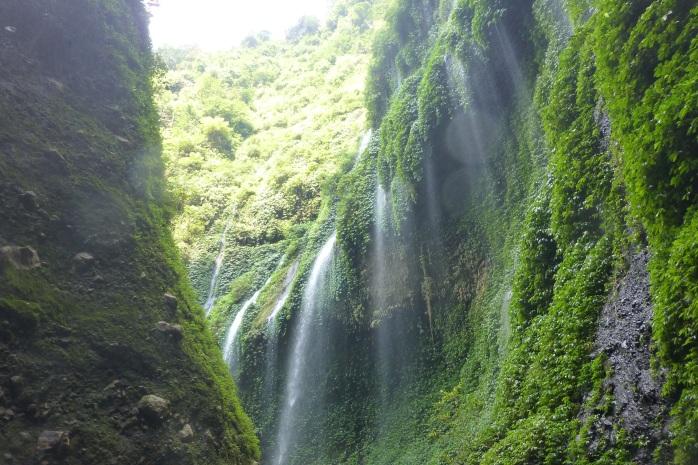Air terjun berbentuk tirai di madakaripura